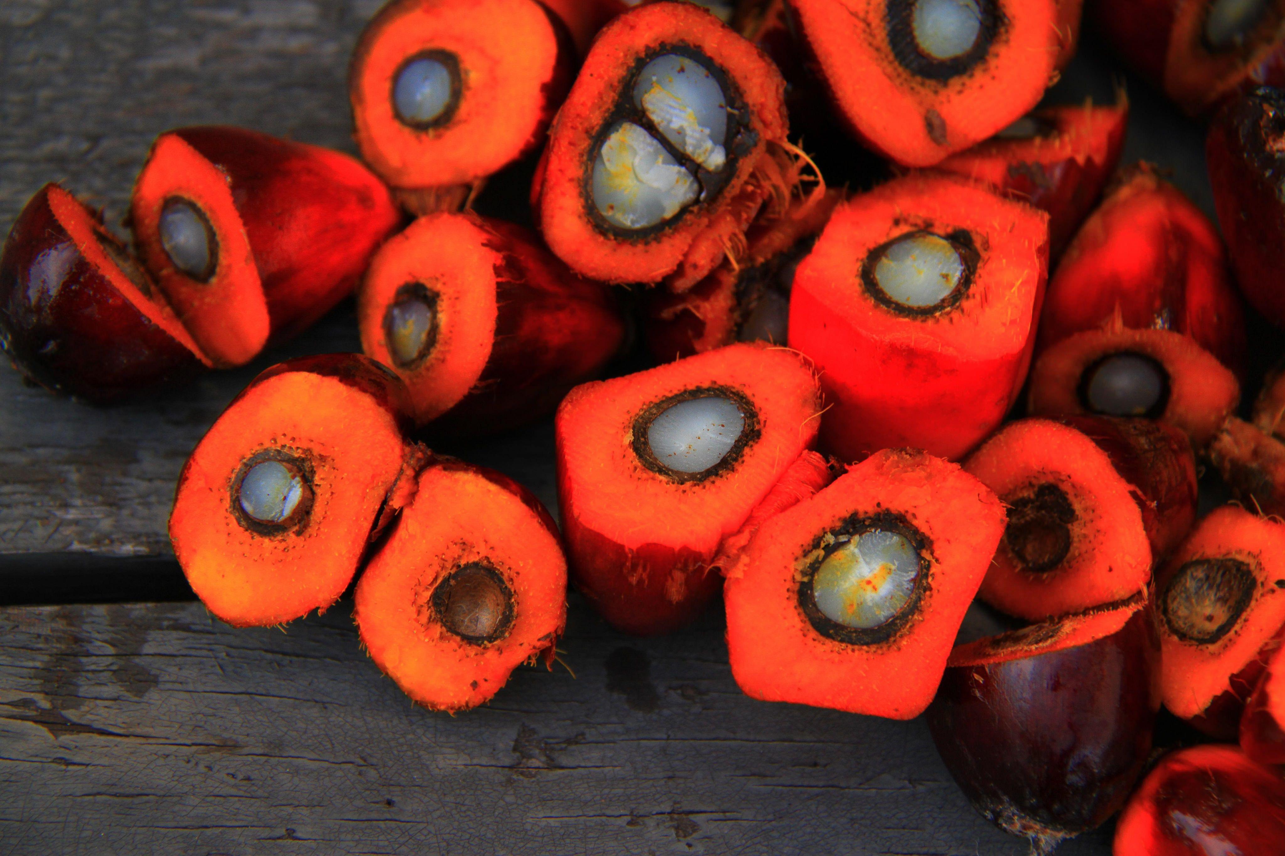 vivre sans huile de palme